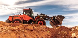 Bobcat Doosan heavy equipment yankees