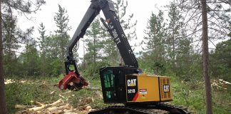 Weiler caterpillar forestry