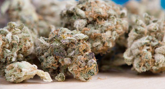 cannabis at work