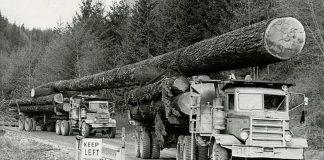 Hayes trucks
