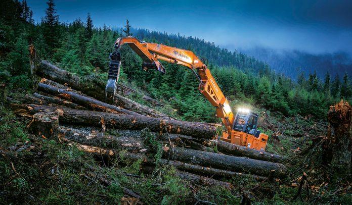 papac alaska logging