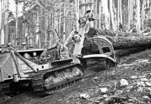 A 1939 Caterpillar RD8 being used for logging.